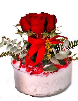 Ankara çiçekçiler  SEVMEK GÜZEL DIYENLERE 7 ADET GÜL