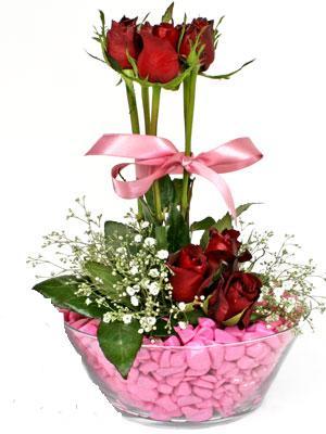 Ankarada çiçek gönderme sitemiz güvenlidir  SEVIYORUM DIYENLER 7 kirmizi gül tanzim