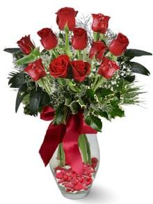 9 adet gül  Ankara hediye sevgilime hediye çiçek  kirmizi gül