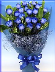 19 adet eşsiz mavi gül buketi  Ankara online çiçekçi , çiçek siparişi