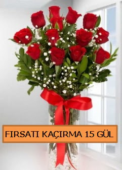 15 İthal kırmızı gül büyük başlı orjinal  Ankara anneler günü çiçek yolla
