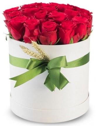 Özel kutuda 25 adet kırmızı gül çiçeği  Ankara çiçek , çiçekçi , çiçekçilik