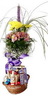 Ankara internetten çiçek satışı  Mevsim çiçekleri ve çikolata