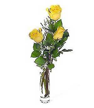 Ankara çiçek servisi , çiçekçi adresleri  3 adet kalite cam yada mika vazo gül