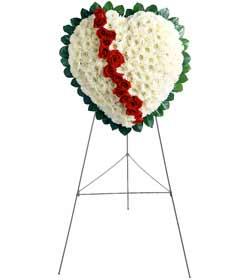 Ankara çiçek servisi , çiçekçi adresleri  kalbimin tek sahibisin benim