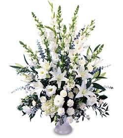 Ankara kaliteli taze ve ucuz çiçekler  saf temiz sevginin gücü çiçek modeli