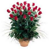 Ankara online çiçekçi , çiçek siparişi  10 adet kirmizi gül cam yada mika vazo