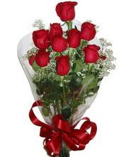 9 adet kaliteli kirmizi gül   Ankara uluslararası çiçek gönderme