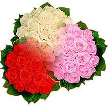 3 renkte gül seven sever   Ankara ucuz çiçek gönder