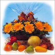 sepette gerbera ve meyvalar   Ankara 14 şubat sevgililer günü çiçek