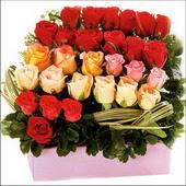 15 adet renkli gül ve cam   Ankara 14 şubat sevgililer günü çiçek