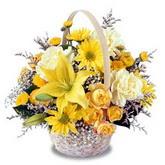 sadece sari çiçek sepeti   Ankara İnternetten çiçek siparişi
