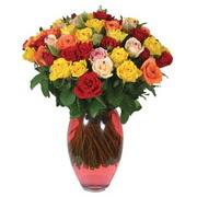 51 adet gül ve kaliteli vazo   Ankara İnternetten çiçek siparişi