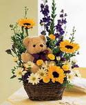 karisik aranjman ve ayicik   Ankara çiçekçi telefonları