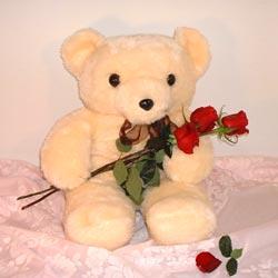 3 gül ve oyuncak ayicik   Ankara ucuz çiçek gönder
