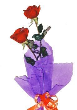 2  adet kirmizi gül buketi   Ankara ucuz çiçek gönder