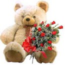 kocaman ayicik ve 10 gül   Ankara ucuz çiçek gönder