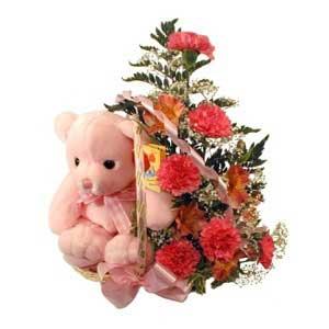 sepette karanfiller ve ayicik   Ankara ucuz çiçek gönder