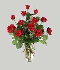 Ankara yurtiçi ve yurtdışı çiçek siparişi  11 adet kirmizi gül vazo halinde