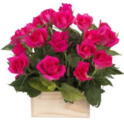 12 adet pembe güllerden sepet tanzimi  Ankara cicekciler , cicek siparisi