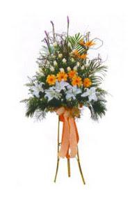 Ankara çiçek siparişi vermek  Kazablanka, gerbera ve güllerle hazirlanmis ferfor
