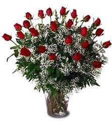 Ankara anneler günü çiçek yolla  Cam yada mika vazo içerisinde 15 adet kirmizi güller,cipsofi