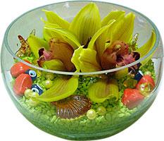 Ankara güvenli kaliteli hızlı çiçek  3 adet cam içerisinde kandil orkide