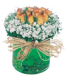 Ankara hediye sevgilime hediye çiçek  Cam yada mika içerisinde 9 adet  gül aranjmani