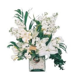 Ankara çiçek servisi , çiçekçi adresleri  sadece beyazlardan olusmus mevsim cam yada mika tanzim
