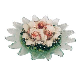 Ankara internetten çiçek satışı  Cam içerisinde 3 adet kandil orkide