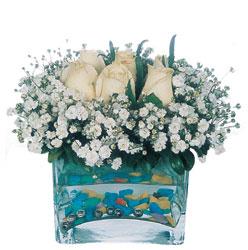 Ankara 14 şubat sevgililer günü çiçek  mika yada cam içerisinde 7 adet beyaz gül