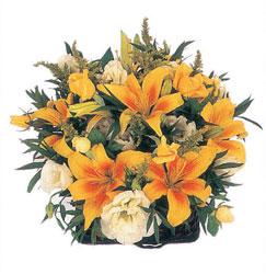 Ankara İnternetten çiçek siparişi  Karisik mevsim sepeti