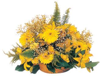 Ankaraya çiçek yolla  karisik mevsim sepeti - mevsimsel çiçekler