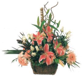 Ankara ucuz çiçek gönder  Mevsimsel Çok özel sevdiklerinize çiçek tanzimi