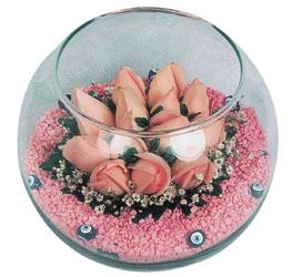 Ankara hediye sevgilime hediye çiçek  cam fanus içerisinde 10 adet gül