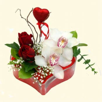 Ankara internetten çiçek satışı  1 kandil orkide 5 adet kirmizi gül mika kalp