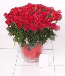 Ankara güvenli kaliteli hızlı çiçek  101 adet kirmizi gül