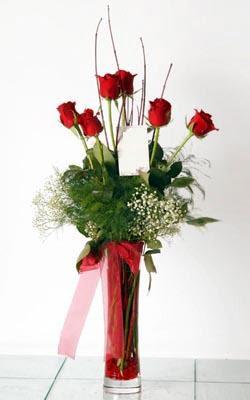 Ankara yurtiçi ve yurtdışı çiçek siparişi  6 adet kirmizi gül ve cam yada mika vazo