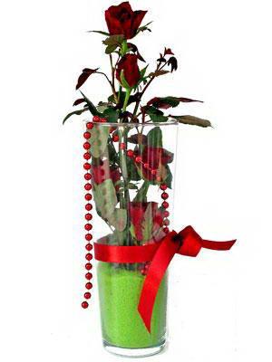 Ankara kaliteli taze ve ucuz çiçekler  Cam yada mika içerisinde 9 adet kirmizi gül - sevdiklerinize özel