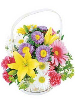 Ankara uluslararası çiçek gönderme  Mevsim sepeti karisik mevsim çiçekleri