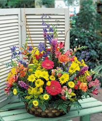 Ankara internetten çiçek satışı  karisik mevsim sepet çiçegi