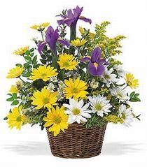 Ankara çiçekçiler  çiçek klasik kir sepeti sevenlere