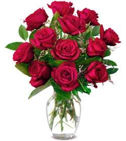 Ankara kaliteli taze ve ucuz çiçekler  1 düzine kirmizi gül sevenlere özel vazo gülleri