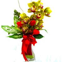 Ankara online çiçekçi , çiçek siparişi  1 adet dal orkide ve cam yada mika vazo tanzim