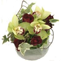 Ankara online çiçek gönderme sipariş  1 kandil orkide ve 5 adet kirmizi gül