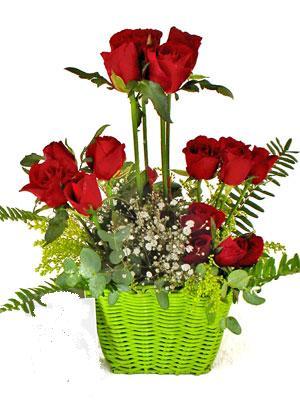 Ankara yurtiçi ve yurtdışı çiçek siparişi  Çiçek siparisi 9 adet kirmizi gül