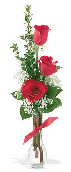 Ankara yurtiçi ve yurtdışı çiçek siparişi  mika yada cam vazoda 3 adet kirmizi gül