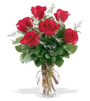 Ankara yurtiçi ve yurtdışı çiçek siparişi  cam yada mika vazoda 6 adet kirmizi gül