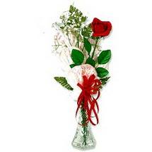 Ankara 14 şubat sevgililer günü çiçek  1 adet kirmizi gül cam yada mika vazoda