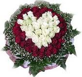 Ankara çiçek siparişi vermek  27 adet kirmizi ve beyaz gül sepet içinde